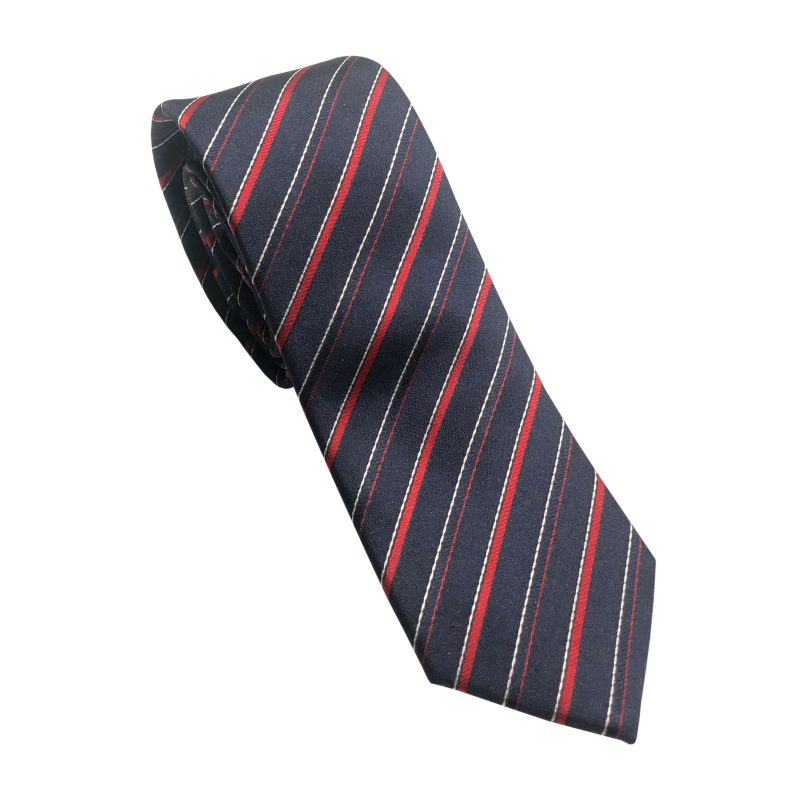 corbata-fina-lux-9